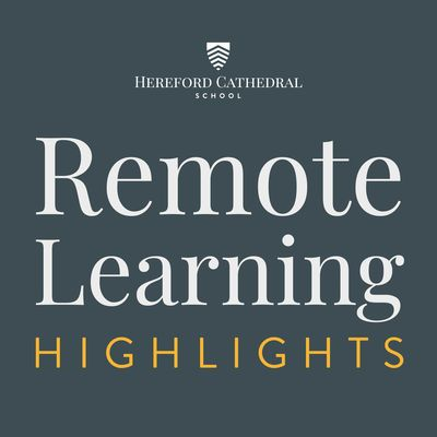 Remote learning highlights